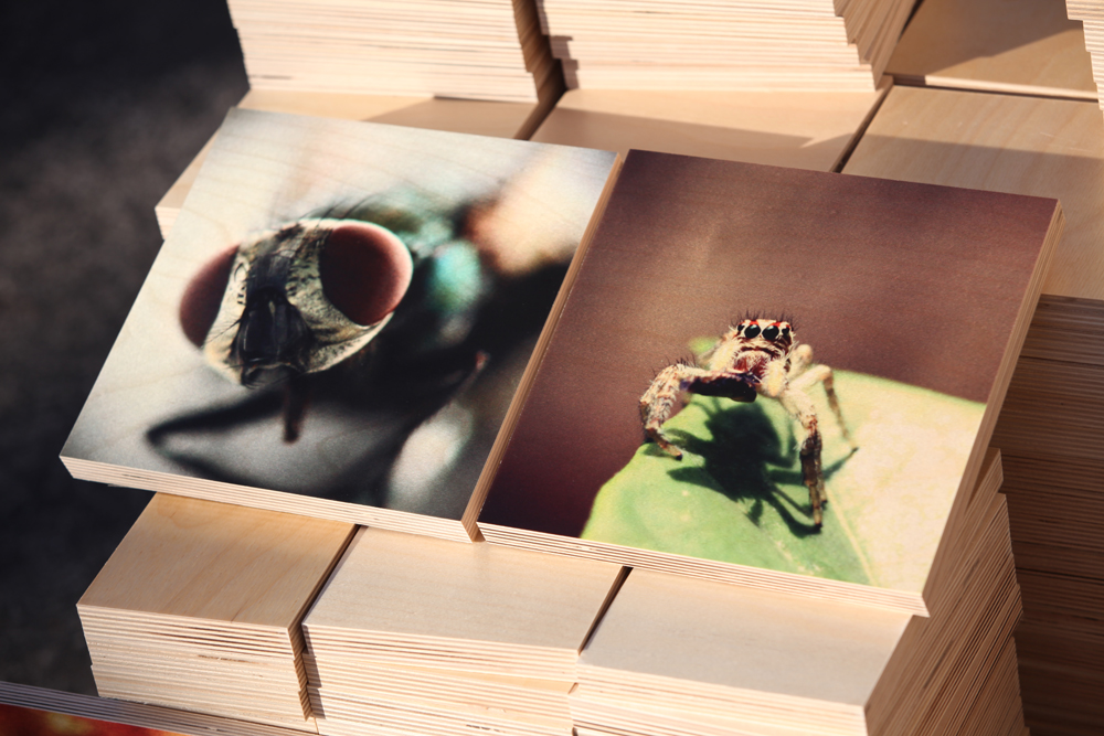 Photo Printing On Wood We will print your photos onto wood and create a gorgeous work of art that you can admire for years. prints on wood